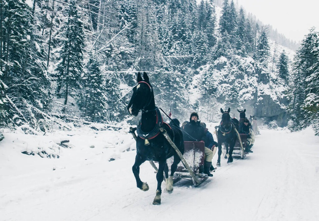 Traditional Kulig Horse Sleigh ride in winter